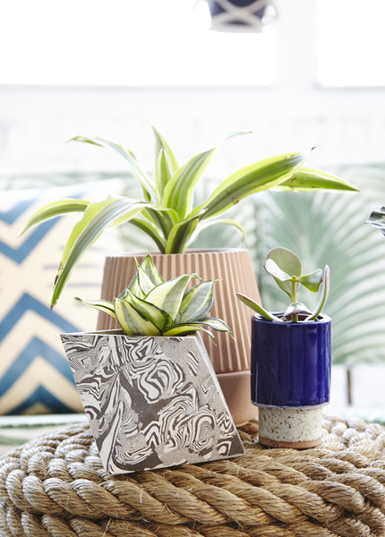 Modern Planters Photos (1 of 9)