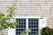White shutters on wood sided home surrounded by lush shrubs.