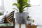 A concrete-and-wood plant stand by Terrain sits next to a wood side table with two faceted planters