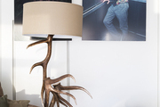 An antler lamp stands next to a chair and a duo of photographs