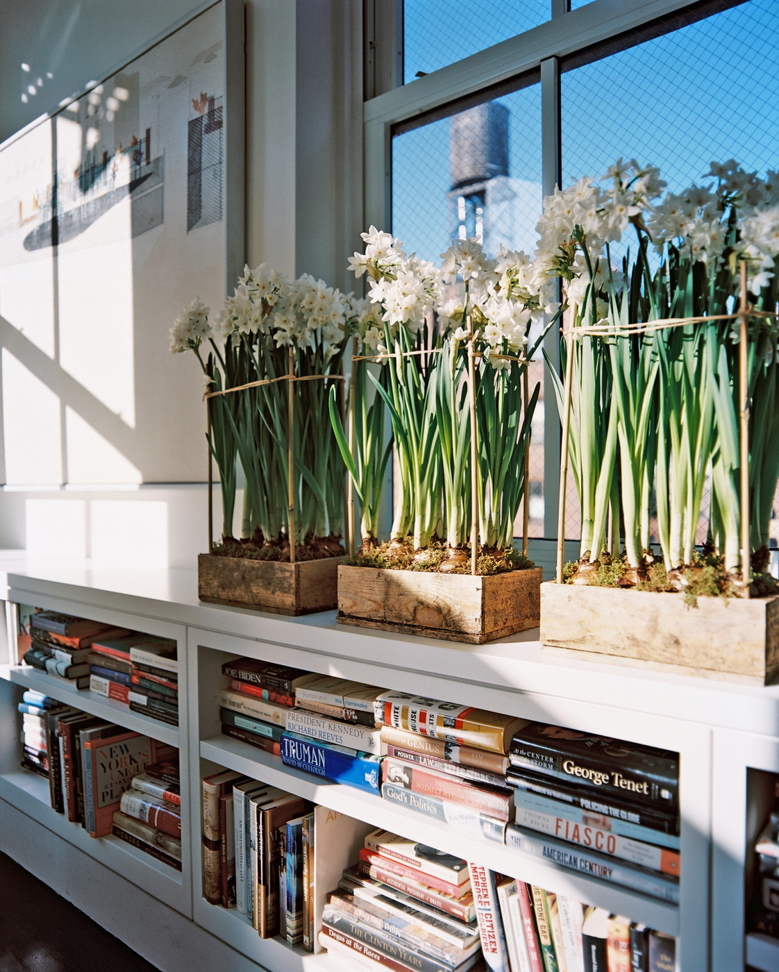 Bookcase Flowers Photos Design Ideas Remodel And Decor