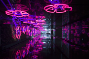 Neon flowers in a mirrored space