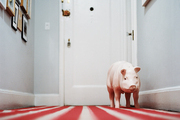 A pig statue in a hallway with gray walls and a striped runner