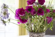 Purple flowers in a gray and white vase