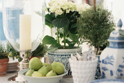 Potted plants, blue-and-white dishes, and a hurricane vase on a kitchen island