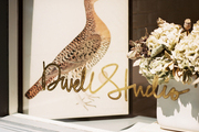 The window display of DwellStudio's SoHo shop