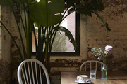 A potted palm tree sits in the corner of an exposed brick cafe in New York City