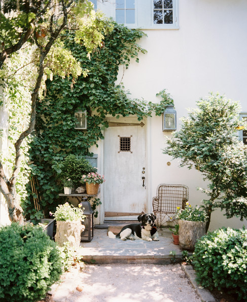 Rustic door photos design ideas remodel and decor lonny for French style front door