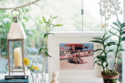 A potted plant, framed photography, and a lantern arranged on a table