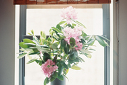 A roman shade above a vase of flowers on a white windowsill
