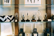 Bare-bulb light fixtures and framed feathers on glass shelves