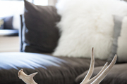 Antlers atop stack of books in contemporary living room.
