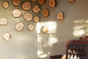 Wood chips affixed to a sun-drenched wall