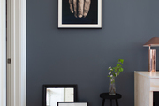 A studio space with a blue-gray wall and modern photography.