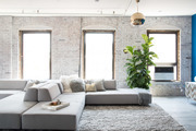 T-shaped sectional and area rug next to large potted plant.