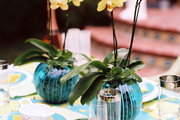 Orchids atop a table set for a summer outdoor dinner party