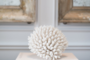 A coral objet atop coffee-table books on an entryway console