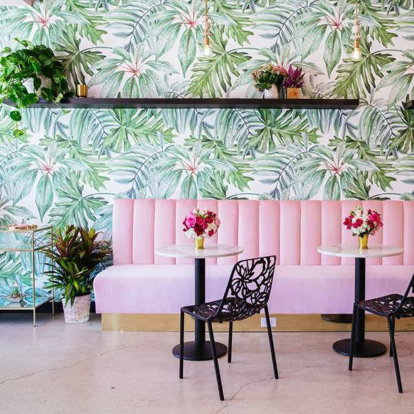 Holy Matcha Is Pink Design Heaven