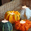 Repurposed Gourds