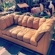 If This Couch Could Talk...