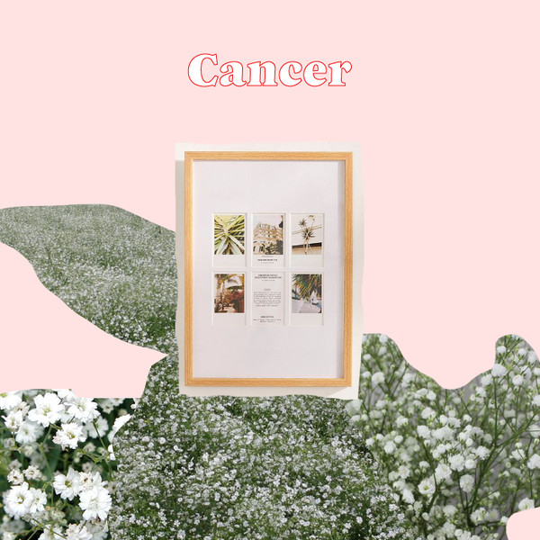 Cancer: Framed Family Photos