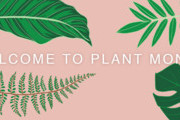 Welcome To Plant Month & A Letter From Our Editorial Director