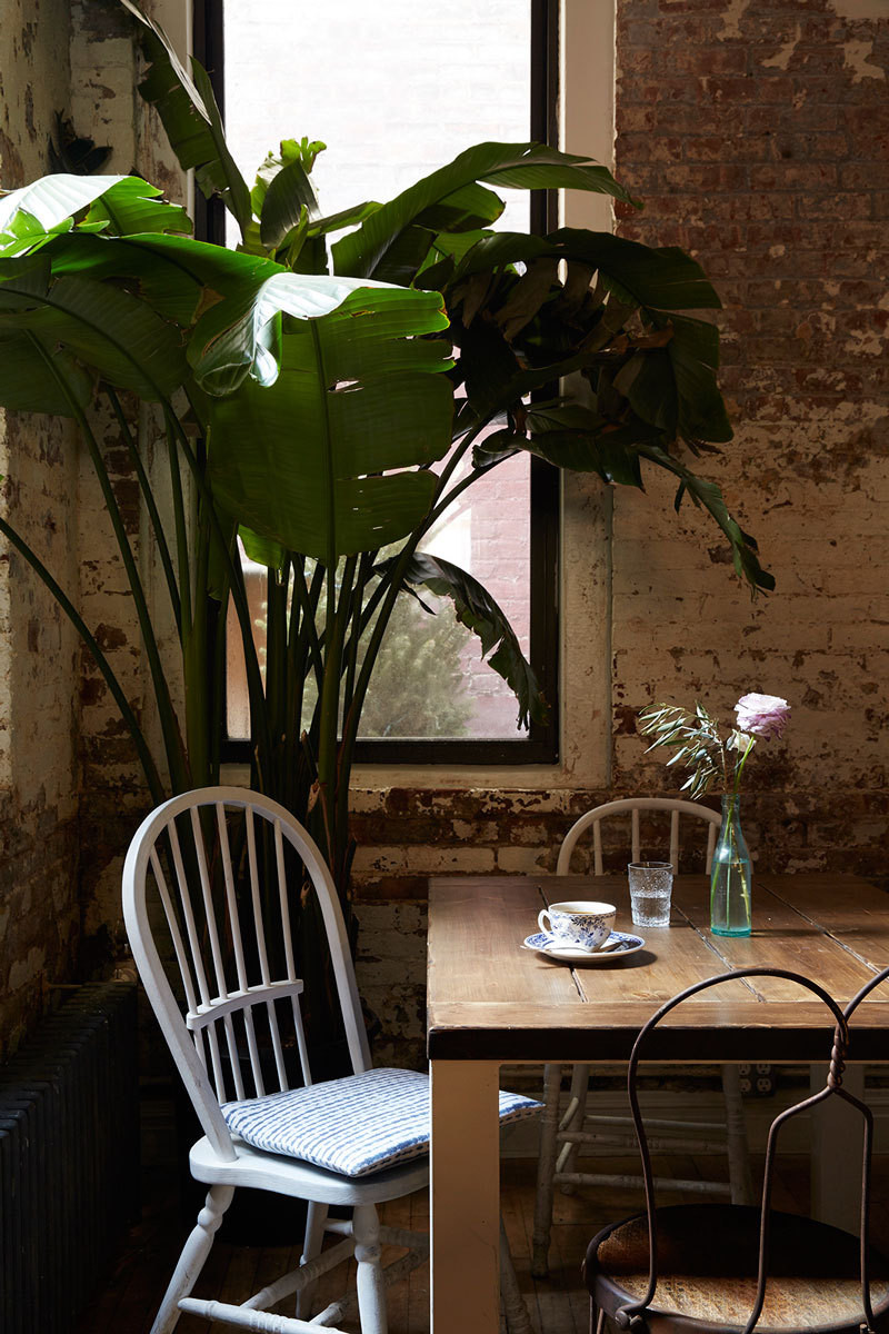 Leafy plants tower over tables with mismatched chairs.