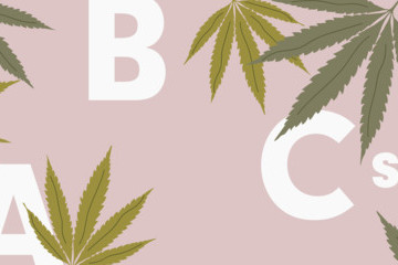 Learn Your Cannabis ABCs: From CBD To THC
