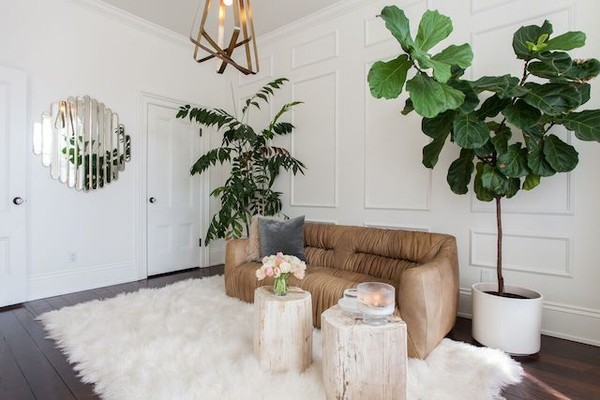 Incorporate Natural Decor