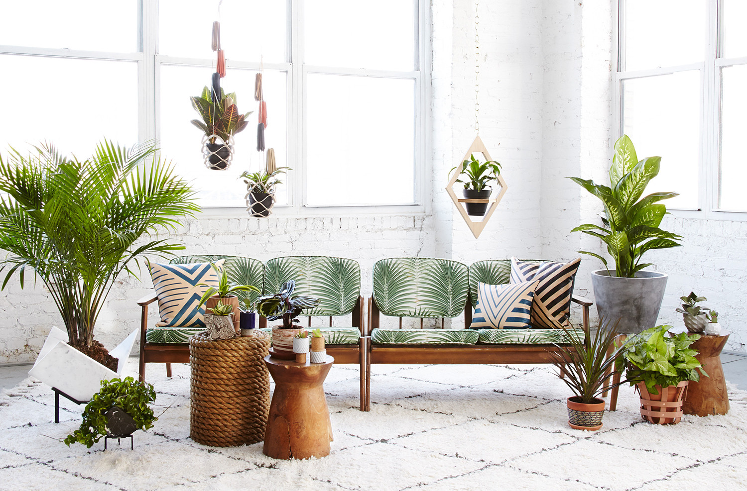An airycorner featuring a few of spring's best planters, with plants by Costa Farms. Shot on location at Patinain Brooklyn, New York.