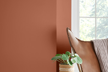 Sherwin Williams' 2019 Color Of The Year Is Here