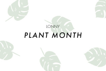 Welcome To Plant Month At Lonny