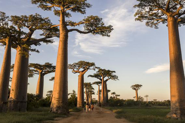 Madagascar These Remote Vacation Spots Will Take Your Breath - Madagascar vacation