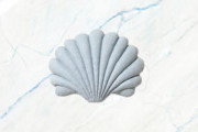 Is The Shell Motif The New It Accent