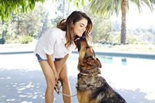 Nikki Reed Designs Stylish Dog Accessories for Gilt