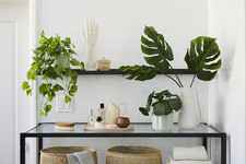 How To Style The Sill's New Faux Plant Line In Your Home