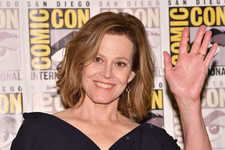 Sigourney Weaver Dishes Details on Her Mysterious 'Defenders' Character